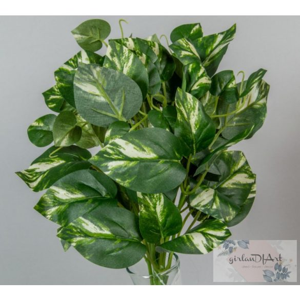 Zöld, foltos levelű bokor